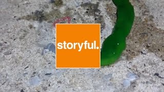 #InsideStoryful - The Mysterious Green Creature Found in Taiwan