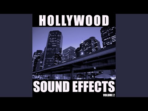 Hollywood Sound Effects Library, Vol. 2
