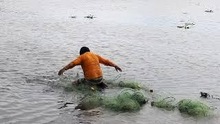 Wow!!... PESCADOR Atrapó Grandes tilapias(!) de Laguna