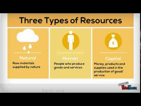 Three Types of Economic Resources: Factors of Production