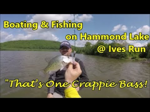 Boating & Fishing On Hammond Lake At Ives Run : That's One Crappie Bass!