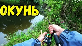 Ловля ОКУНЯ на спиннинг в ПОДМОСКОВЬЕ. Ловля на вертущку и воблер. Река Десна.