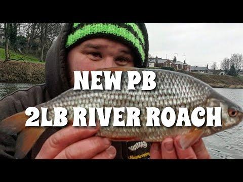 ***NEW 2lb PB Roach!!***  River Fishing on The Bolo