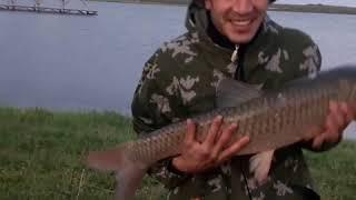 Рыбалка в КБР!!!!ОХОТА НА ТРОФЕЯ Белый Амур!!! База отдыха ЕРМАК !!!