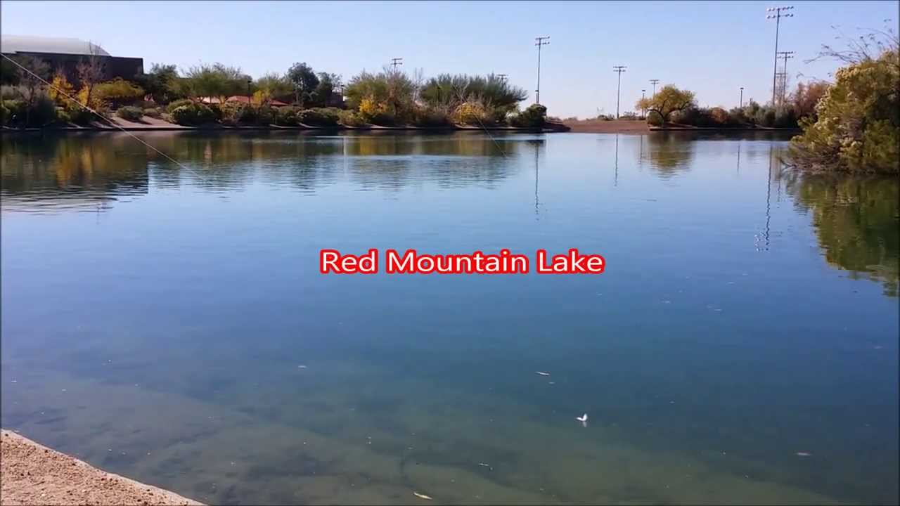 Red mountain lake az fishing youtube for Green mountain reservoir fishing