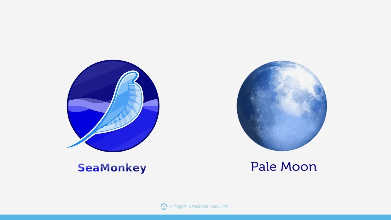 Sea Monkey & Pale Moon Alternative Browser Access Methods for Amcrest IP  cameras
