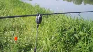 Łosice zalew karpiowanie (bez karpi)