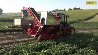 ALINA SUPERNOVA - kombajn do marchwi, pietruszki, buraczka, selera / Carrot harvester / Möhrenroder