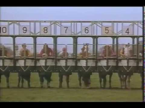 Hamlet Horse Racing 1980'sVintage British TV Commerical