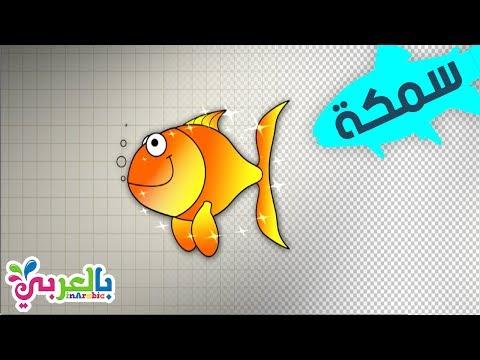 رسم سمكة تعليم الرسم للاطفال وتلوينها بطريقة بسيطة للاطفال رسمة ومعلومة بالعربي