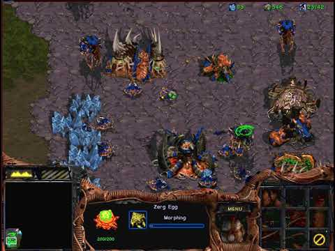 StarCraft: Brood War - Zerg vs 4 Protoss - Big Game Hunters map