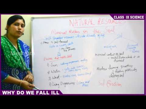9 Class IX CBSE Science Natural Resources Part 3
