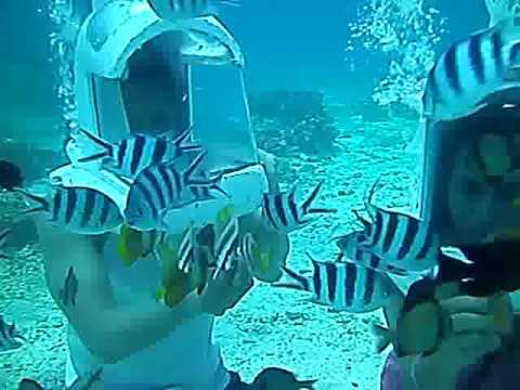 Underwater Boracay