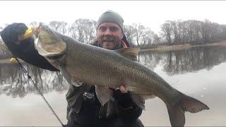 НОВЫЙ РЕКОРД Ловля ЖЕРЕХА весной Рыбалка на Москва реке на спиннинг Колебалка на жереха