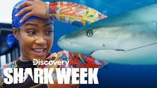 Tiffany Haddish Dives with Lemon Sharks! | Shark Week