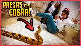 ALGEMEI ELAS NO BANHEIRO COM UMA COBRA DE QUASE 2 METROS!! - TROLLANDO AMIGAS [ REZENDE EVIL ]