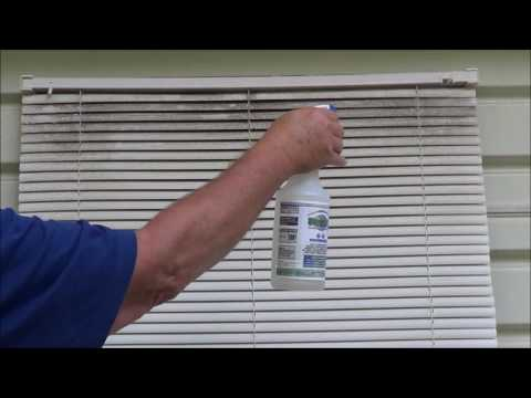 Mold & Mildew Cleaning from Blinds