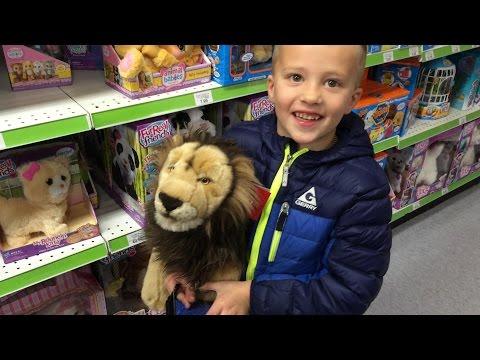 Toys R Us Shopping Spree