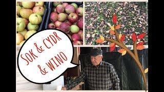 Zapraszam na filmik, w którym zaproponowałem 3 sposoby na jabłka. M...
