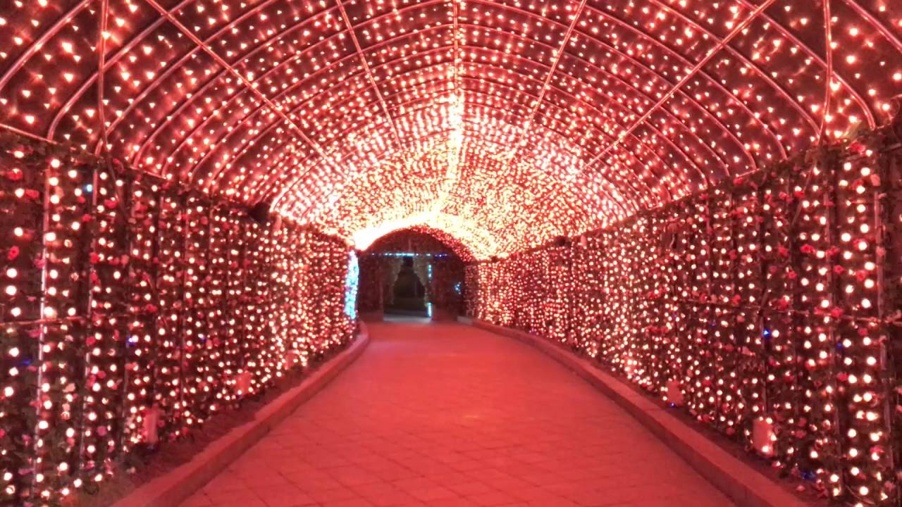 2016 LED Light Show - LED illumination Tunnel In Korea which is response to music! - YouTube  sc 1 st  YouTube & 2016 LED Light Show - LED illumination Tunnel In Korea which is ... azcodes.com