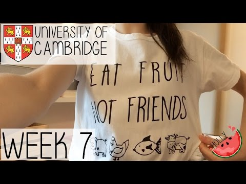 WEEK 7 AT CAMBRIDGE UNIVERSITY | TOURING OTHER COLLEGES, WHO IS MY NEIGHBOUR + WORK OVERLOAD