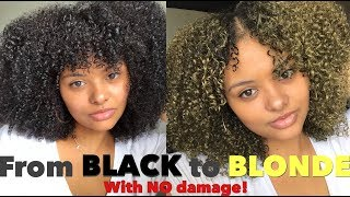 BLACK TO BLONDE WITH NO DAMAGE! TEMPORARY HAIR COLOR WAX