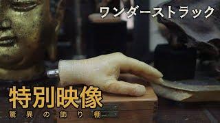 4/6公開『ワンダーストラック』特別映像:驚異の飾り棚