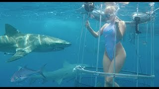 Shark Attack - Cam Girl Bitten off Florida Coast thumbnail