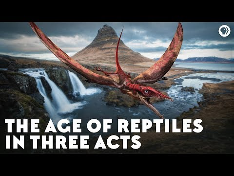 The Age Of Reptiles In Three Acts