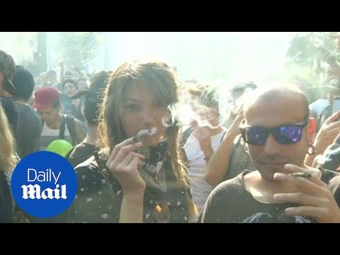 Thousands smoke up in Santiago marijuana demo - Daily Mail