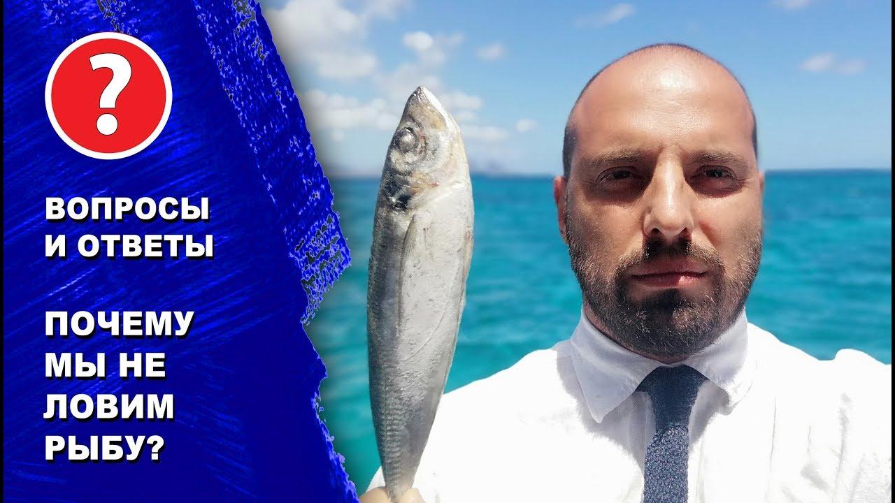 Ответы на вопросы. Почему мы НЕ ловим рыбу на яхте, а покупаем в супермаркете.