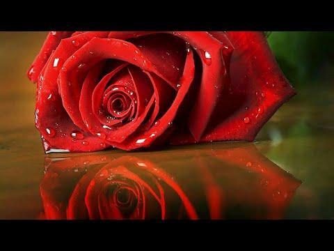 Heart Touching Lines   Hindi Shayeri    Sad Emotional Lines   Sad SMS  