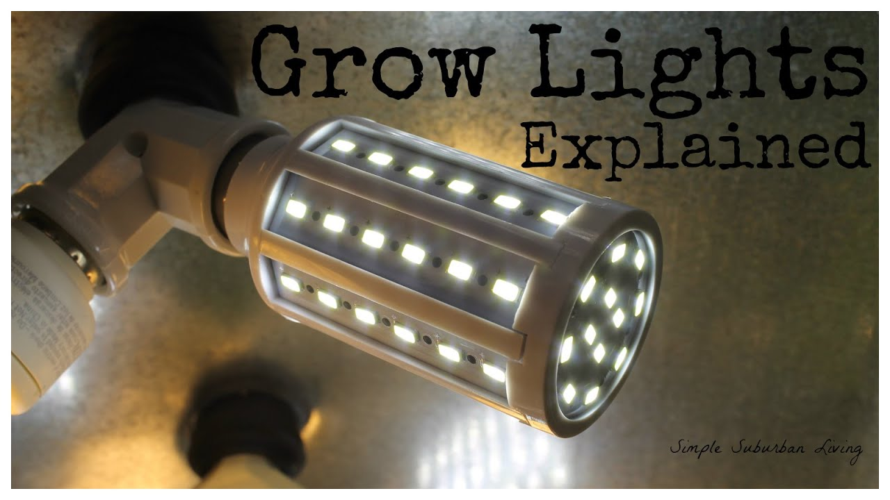 Indoor Grow Lighting Explained Light intensity Color