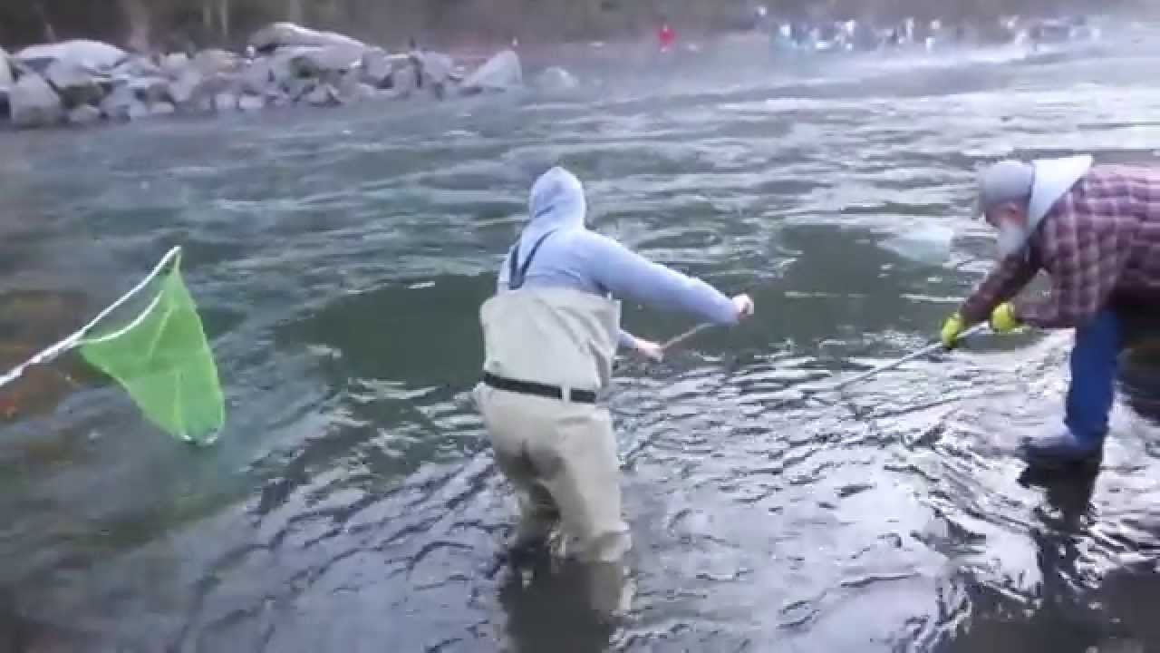 How to smelt fish sandy river oregon youtube for Sandy river fishing report