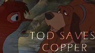 The Fox and the Hound - Tod saves Copper from Bear HD