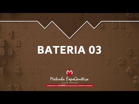 BATERIA 03 MATINHA EXPOGENÉTICA 2021