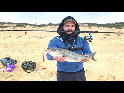 Salmon Fishing Off The Surf | 90 Mile Beach Surf Fishing For Australian Salmon
