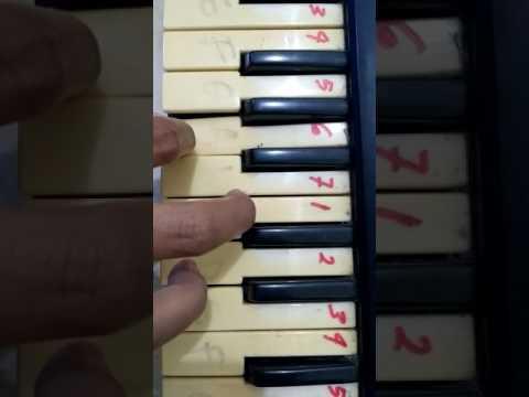 Not Piano Lagu Arema *Salam Satu Jiwa*