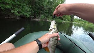КТО ИЗДАЁТ ТАКИЕ ЗВУКИ Рыбалка сплавом в августе на реке