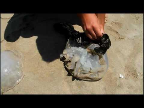 Tyre Beach - Lebanon 2011 صور لبنان