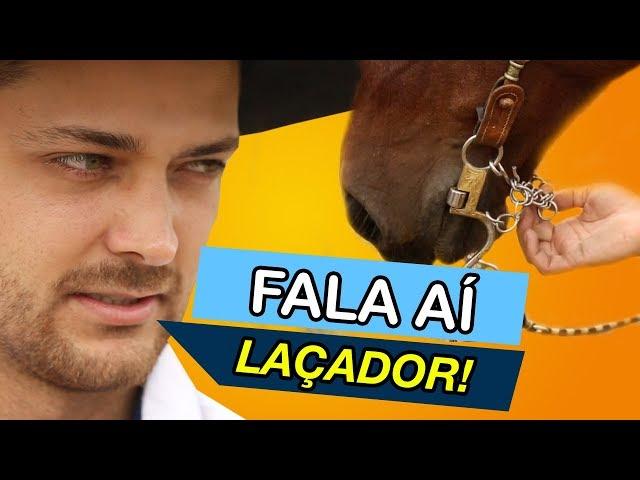 Cavalo de LAÇO que não se adapta ao FREIO