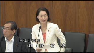 2015.5.29 衆院文部科学委員会 畑野君枝議員の質問.