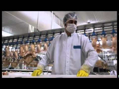 Turkey's poultry sector faces risk of losing biggest export market