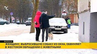 Женщину, выбросившую щенка из окна, обвиняют в жестоком обращении с животными