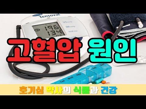 고혈압의 원인 : 도대체 고혈압은 왜 생기는 걸까요? 원인을 바로 알아야 해결할 수 있습니다