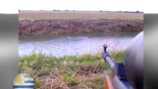 Caza de Patos con chumbera (rifle de aire comprimido 5.5 mod. gs1250).