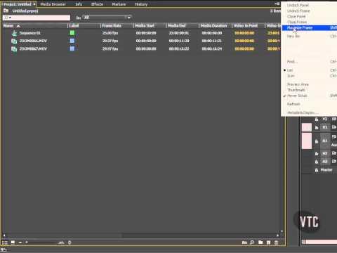 [ Adobe Premiere CC Tutorial ] Project Panel