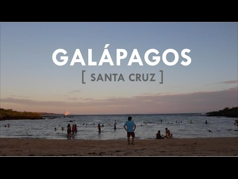 Galápagos Islands: Santa Cruz en 3 minutos | Traveling to ECUADOR