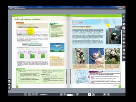 hipertexto santillana fisica 1 solucionario pdf