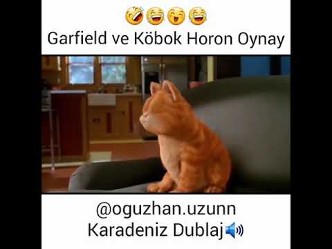 Garfield ve Köbok Horon Oynay - Karadeniz Dublaj indir